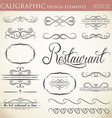 calligraphic design elements to embellish your vector image vector image
