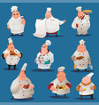 chef characters vector image
