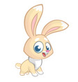 happy rabbit cartoon isolated vector image vector image