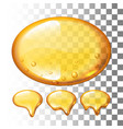 set of honey drops on transparent vector image vector image