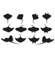 set of stingray silhouette and icons vector image