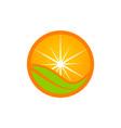 orange icon logo design template vector image