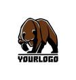 bear logo sign pictograph vector image vector image