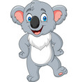 cartoon little koala posing vector image vector image