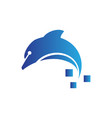 digital dolphin logo vector image