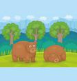 family bears vector image