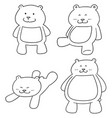 set of bear vector image vector image