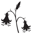 stylized silhouette image beautiful flower vector image vector image