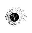 sunflower icon design template isolated vector image