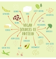 Vegan plant-based sources of protein vector image vector image