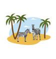 couple zebras on savanna landscape layout flat vector image vector image