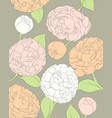 delicate peonies on a dark background vector image vector image