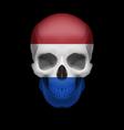 Dutch flag skull vector image