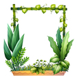 Green plants vector image vector image