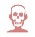 human skull skeleton x-ray medicine test vector image vector image