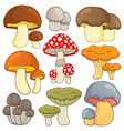 mushroom theme collection 1 vector image vector image
