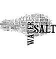 why finish your detox with a salt water cleanse vector image vector image
