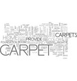 a beautiful carpet sets the mood of any room text vector image vector image