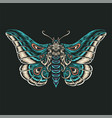 butterfly hand drawn line style with digital colo vector image