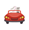 Cute little bunny driving vintage red car funny vector image