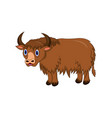 cute yak cartoon vector image vector image