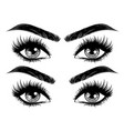 eyes with long eyelashes and brows vector image vector image