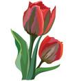flower 10 vector image