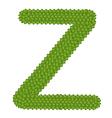 Four Leaf Clover of Alphabet Letter Z vector image