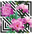 pink peony floral pattern geometric black and vector image