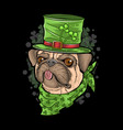 st patricks day pug puppy dog artwork vector image vector image