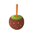 sweet caramel and chocolate candy apple vector image vector image