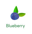 blueberry cartoon flat icon vector image vector image