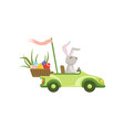 cute bunny driving green vintage car with easter vector image vector image