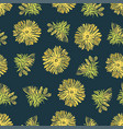 dandelion color plant seamless pattern illu vector image
