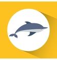 Dolphin cartoon over circle icon graphic vector image