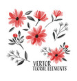 floral set floral collection watercolor vector image vector image