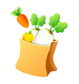 icon vegetable vector image vector image