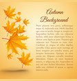 natural autumn realistic poster vector image vector image