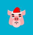 sad santa pig emoji sorrowful piggy farm animal vector image vector image