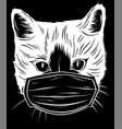 white silhouette head cat with mask protection vector image vector image