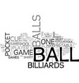 a beginner s guide to billiards text word cloud vector image vector image