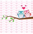 backgrounds with couple of owls vector image vector image