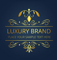 luxury brand gold text design image vector image