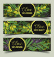 signs for shop with olive branches with berry vector image vector image