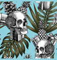 skull gifts pineapple cone tropical background vector image vector image
