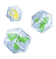 refreshing ice cube with slice of lemon and mint vector image