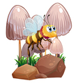 A bee near the mushrooms and rocks vector image vector image