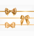 bundle golden satin ribbons decorated with bows vector image
