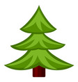 colorful cartoon fir tree vector image