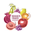 fruits hand drawn frame banner template vector image vector image